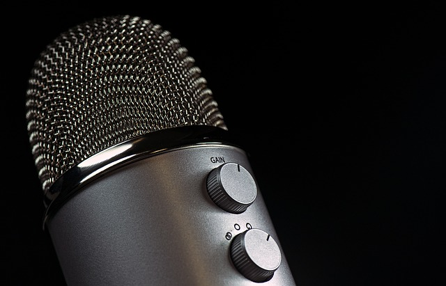 microphone 1172260 640